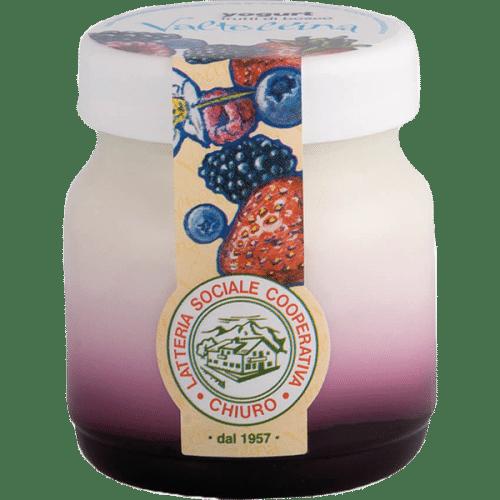 Yoghurt_Frutti_di_Bosco